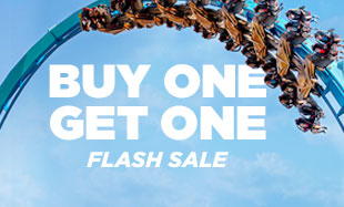 BUY ONE GET ONE FREE FLASH SALE!